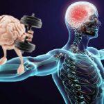 Muscle Memory and Massage Therapy, Santa Barbara, Ca