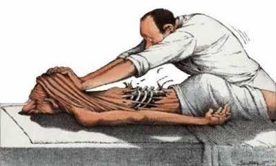 Sports Stretch Massage, Fascial Stretch FST & Self Stretching
