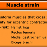 Massage for Muscle Tears
